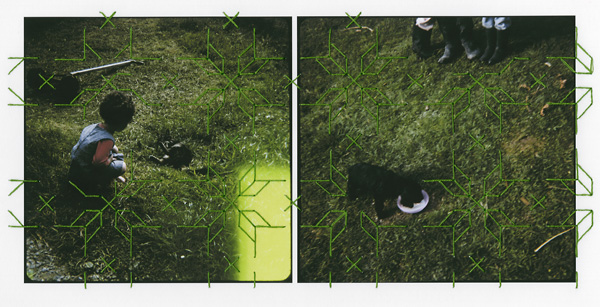 Untitled #2 (Animals) (2009)