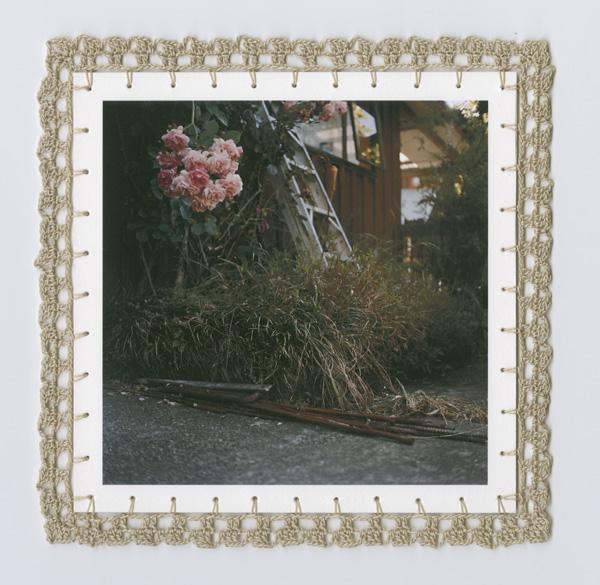 Roses (2008/09)