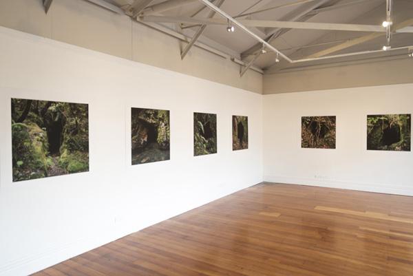 Homewardbounder, Enjoy Gallery,